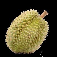 WEB-Carré-durian